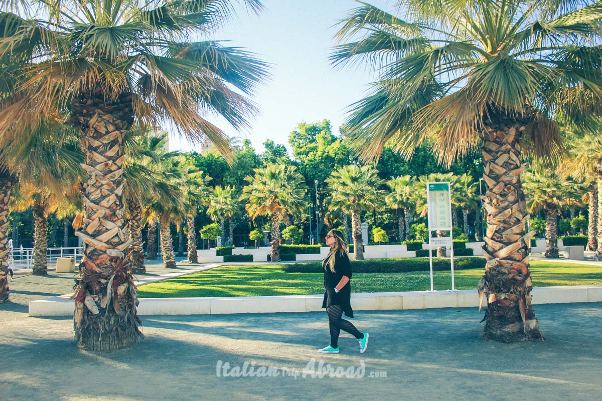 Malaga Park - Amazing Garden close to the Harbour of Malaga - Best beaches in Malaga
