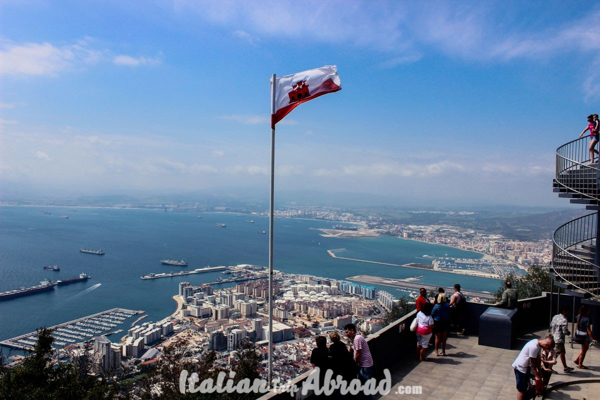 1 day in Gibraltar - Tour of Gibraltar - Apes on the top of the rock