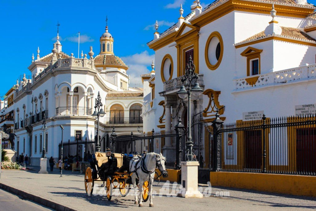 The beauty of Sevilla - Discover Sevilla - Plaza de Toros