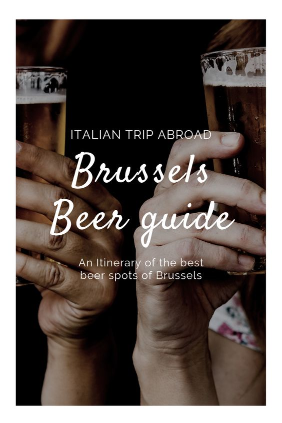 Brussels beer guide