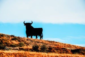 SPAIN SPRING BREAK | 8 CITIES YOU SHOULD VISIT 1
