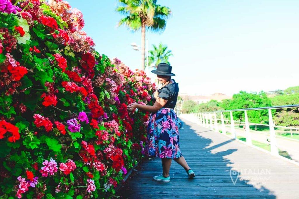 Ponte de las flores Valencia