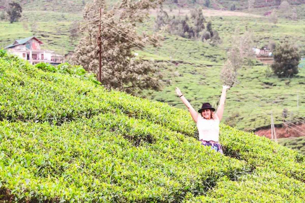 Tea Plantation photos in Sri Lanka