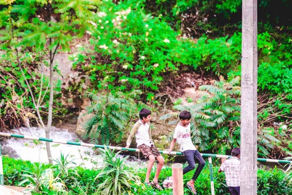 Kids playing in a tea plantation in Sri Lanka