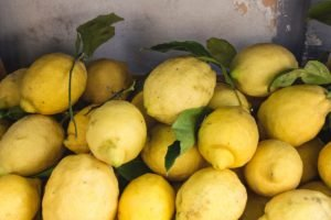 Lemon of Sorrento are popular and most juicy and tasty