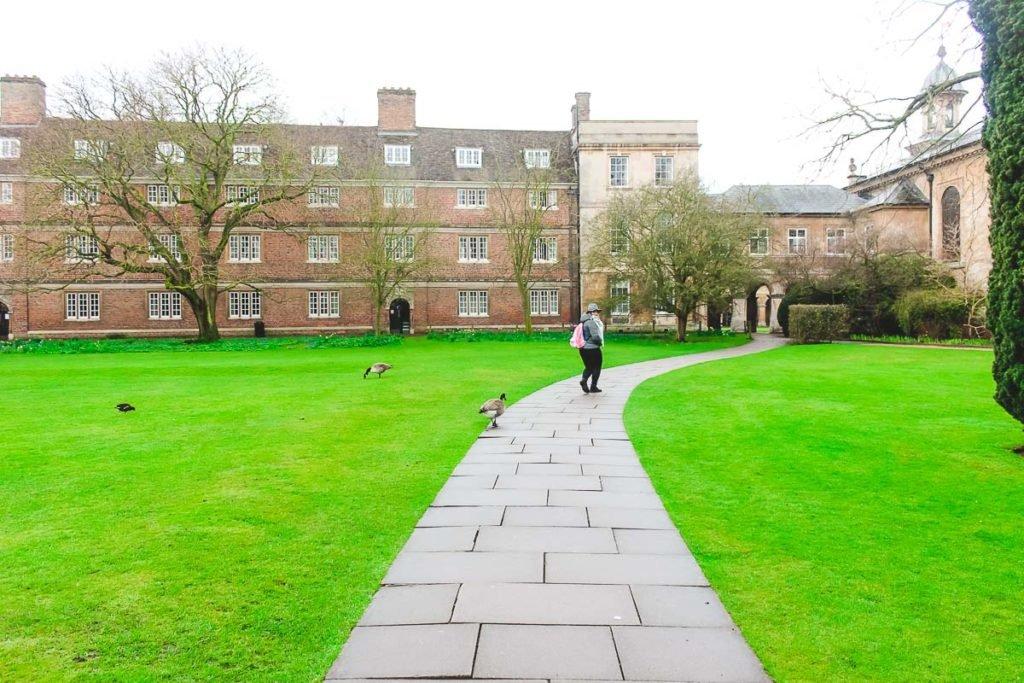 Cambridge Colleges Gardens