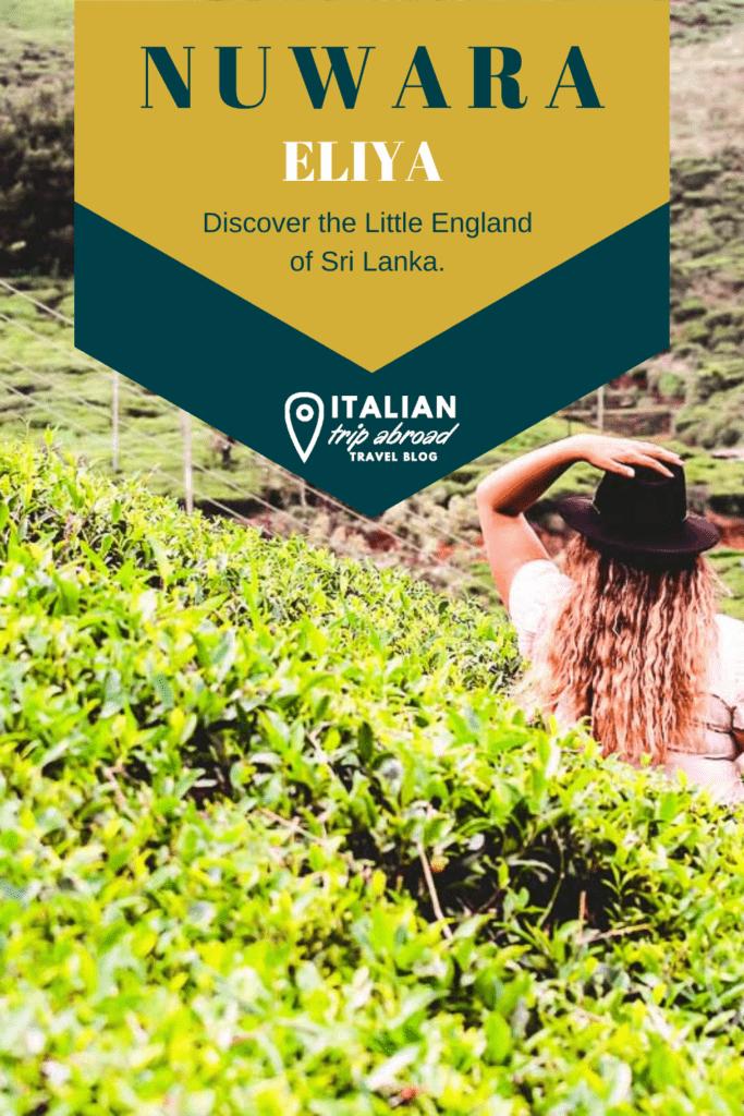 Nuwara Eliya - The little England of Sri Lanka