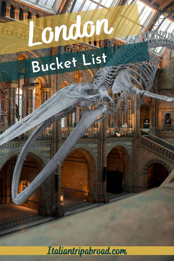 Natural History Museum in our London Bucket List - Pin - What to do in London - UK